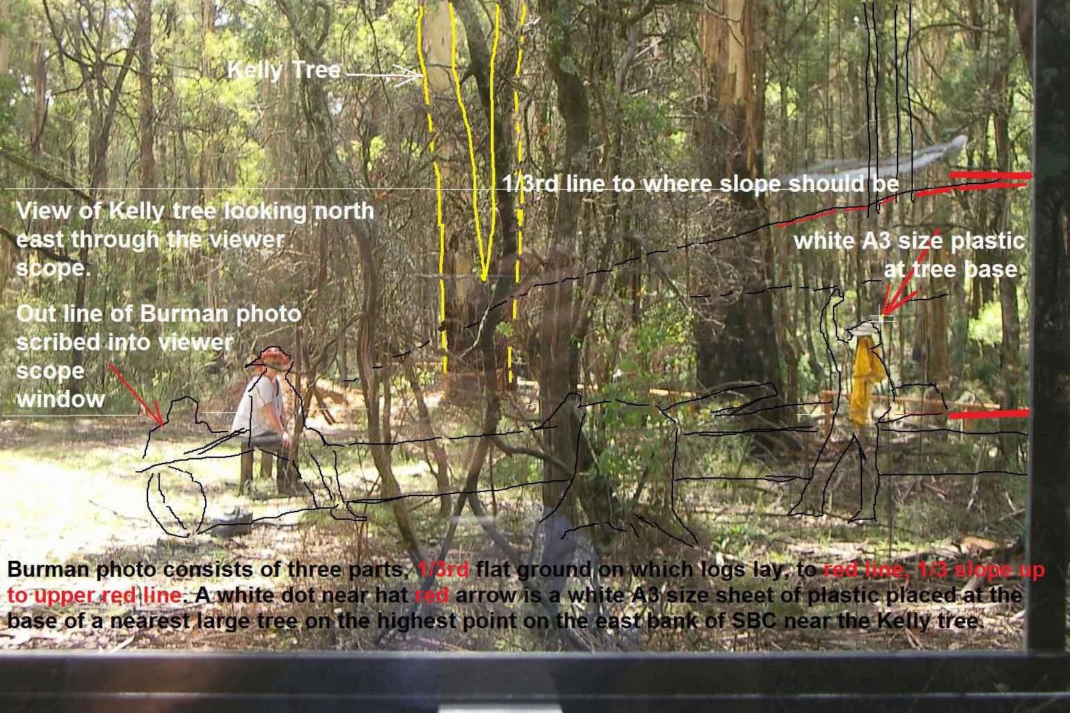 orientation of burman photos at sbc - Page 4 Viewerscopekellytree7953